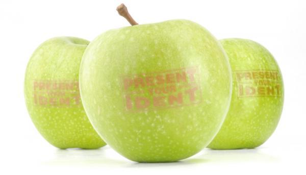 Werbeobst Apfel grün