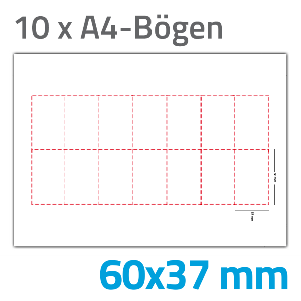 Einsteckschilder 60x37 Ausweise 5100-0046